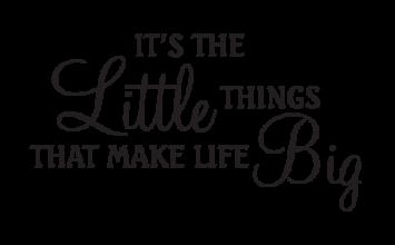 #25.Jun.2017 Just a little thing…